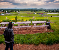 student looks over the Harrisonburg campus