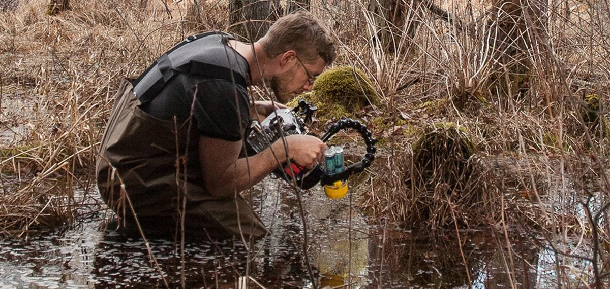 Professor Steven Johnson Focuses on Conservation Photography