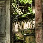 Old farm building - Photo by Jonathan Drescher-Lehman