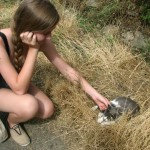 Maria and one of several cats we have met on our travels. In the Sierra Nevada. Photo by: Annika Maust
