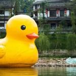 Langzhong duck