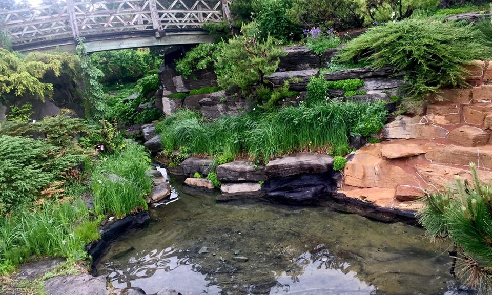 Garden bridgeACather