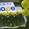 walk_for_hope_web_2013