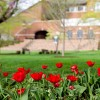Holy Week Reflection from EMU professor Don Clymer